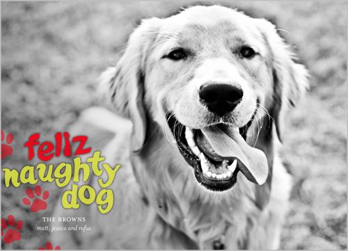 feliz_naughty_dog