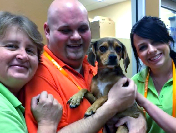 Bella, an adoptable Beagle, poses with her friends from The Animal Foundation.