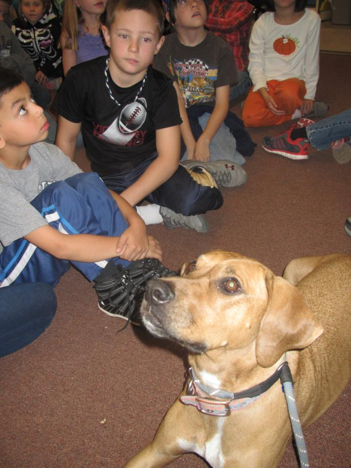 Build A Bear Youth Humane Education Grant