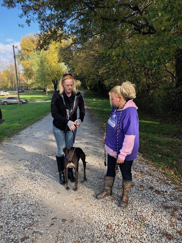 Clay County Humane Society: Build-A-Bear Youth Humane