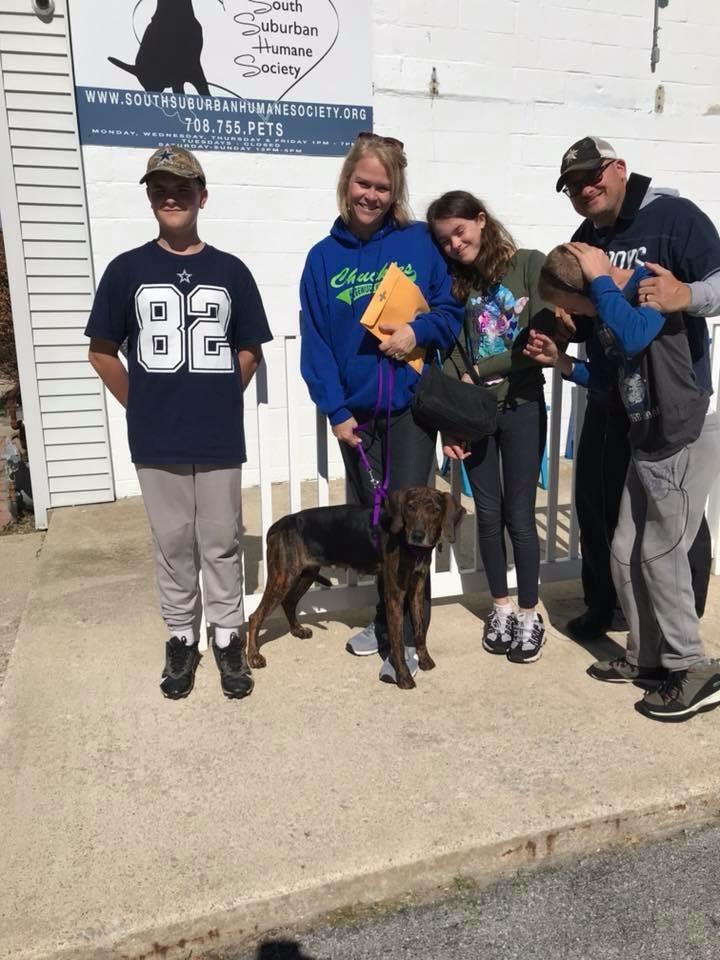 South Suburban Humane Society: Sponsor a Pet Grant Report